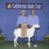Thumbnail image for Wire Ranch attend the California State Fair July 25-29, 2013